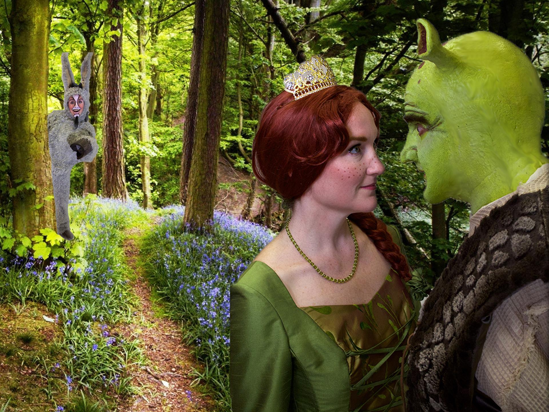 Shrek Fiona Donkey